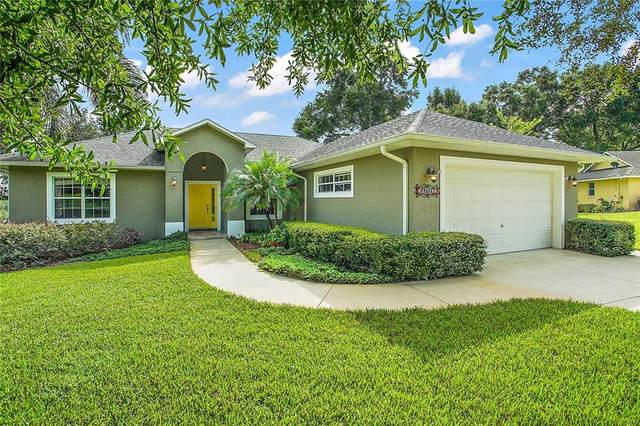 23709 Sunset View, Sorrento, FL 32776 (MLS #O5884884) :: Carmena and Associates Realty Group
