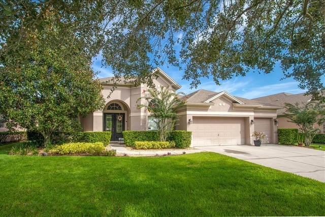 669 Broadoak Loop, Sanford, FL 32771 (MLS #O5884918) :: Pepine Realty