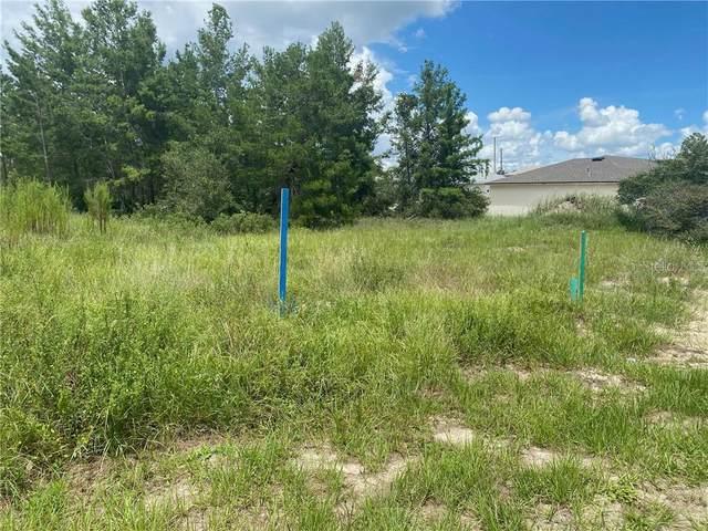 311 Elderberry Ct, Poinciana, FL 34759 (MLS #O5884930) :: Premium Properties Real Estate Services