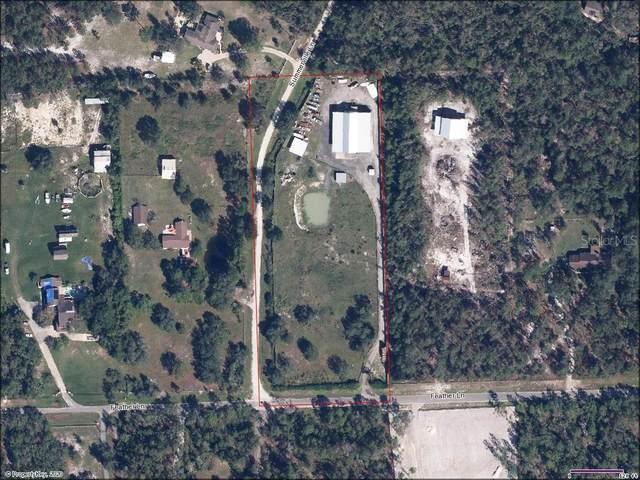 6074 Feather Lane, Sanford, FL 32771 (MLS #O5885403) :: Alpha Equity Team