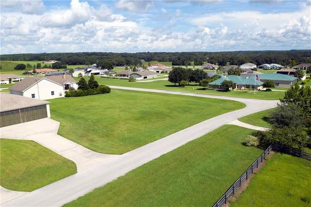 SE 159TH Terrace, Weirsdale, FL 32195 (MLS #O5885846) :: Heckler Realty