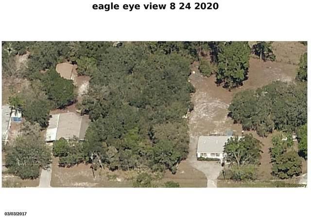 Spruce Drive, Eustis, FL 32736 (MLS #O5886662) :: Zarghami Group
