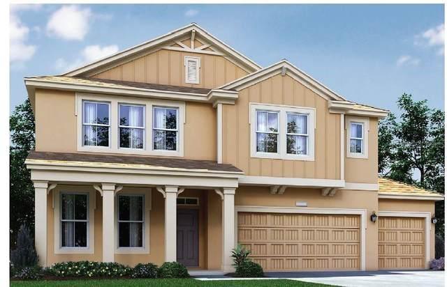 471 Cavesson Street, Apopka, FL 32712 (MLS #O5886979) :: Cartwright Realty