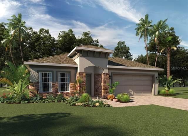 516 Wildcat Lane, Davenport, FL 33837 (MLS #O5887201) :: Bustamante Real Estate