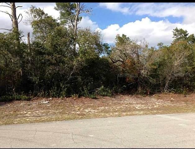 2252 Fernwood Street, Deltona, FL 32738 (MLS #O5887221) :: Team Bohannon Keller Williams, Tampa Properties