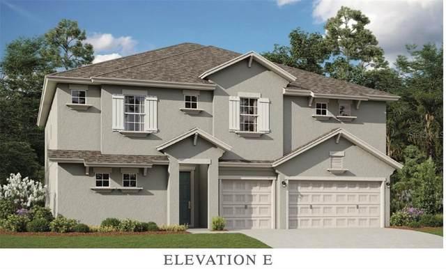 689 Brooks Field Drive, Winter Garden, FL 34787 (MLS #O5887237) :: Pepine Realty