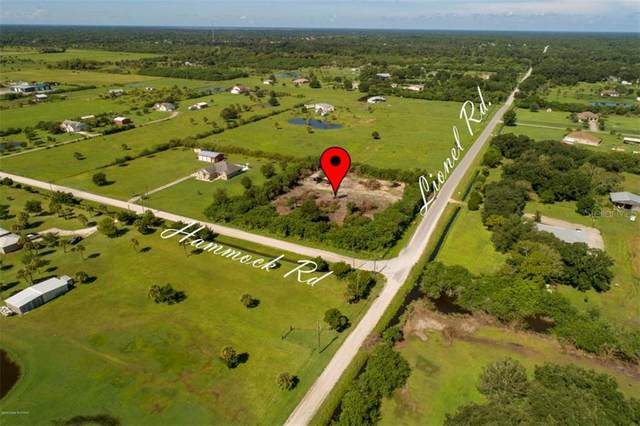 Lionel Road, Mims, FL 32754 (MLS #O5888031) :: Everlane Realty