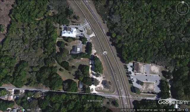20214 Us Hwy 441, Mount Dora, FL 32757 (MLS #O5888352) :: Heckler Realty