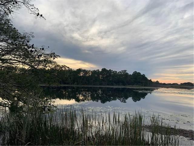 9444 Lake Hickory Nut Drive, Winter Garden, FL 34787 (MLS #O5888600) :: Baird Realty Group