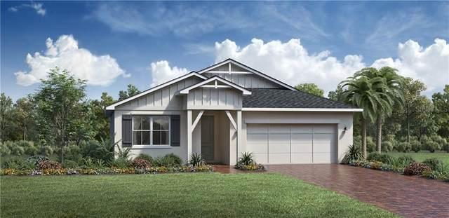 3425 Bluff Oak Lane, Sanford, FL 32771 (MLS #O5889136) :: The Robertson Real Estate Group