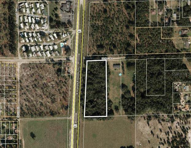 6764 Dudley Avenue, Mount Dora, FL 32757 (MLS #O5889345) :: Heckler Realty