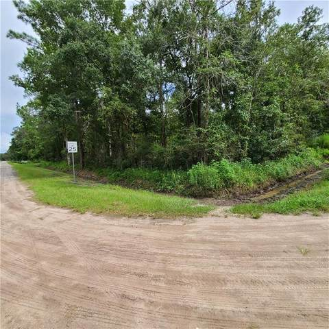 Address Not Published, Hastings, FL 32145 (MLS #O5890089) :: Rabell Realty Group
