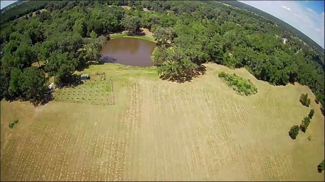 00 W Highway 318, Williston, FL 32696 (MLS #O5891099) :: Bustamante Real Estate
