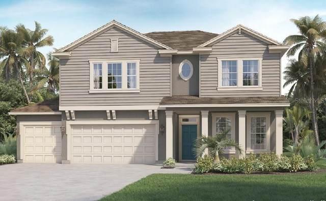 454 Cavesson Street, Apopka, FL 32712 (MLS #O5891795) :: Carmena and Associates Realty Group
