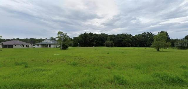 350 W Pennsylvania Avenue, Lake Helen, FL 32744 (MLS #O5891828) :: Bustamante Real Estate