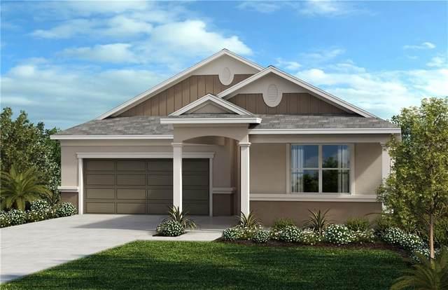 2364 Carriage Pointe Loop, Apopka, FL 32712 (MLS #O5891901) :: Rabell Realty Group