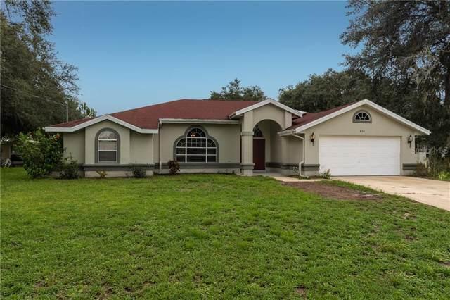 802 Weller Court, Deltona, FL 32738 (MLS #O5892469) :: Zarghami Group