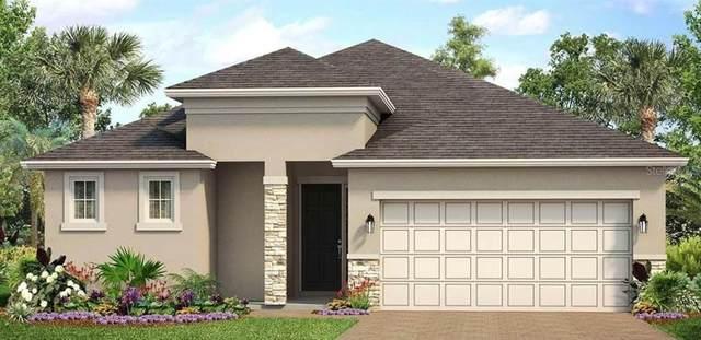 2941 Bluestem Lane, Clermont, FL 34714 (MLS #O5892887) :: Team Bohannon Keller Williams, Tampa Properties