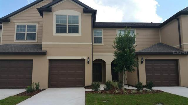 528 Virtuoso Lane #66, Orlando, FL 32824 (MLS #O5893069) :: The Price Group
