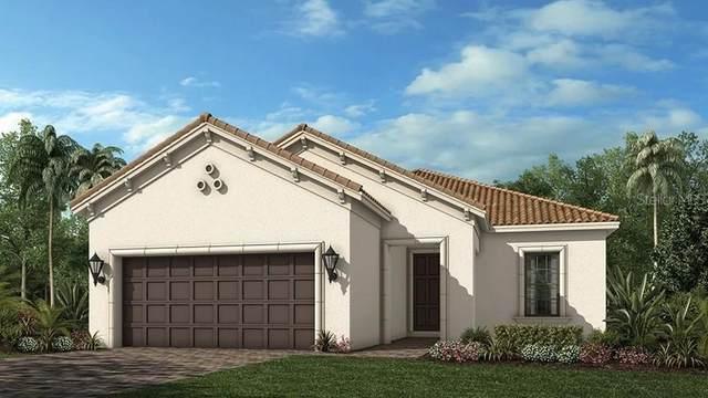 1378 Zeek Ridge Street, Clermont, FL 34715 (MLS #O5893095) :: Dalton Wade Real Estate Group