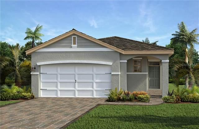 17402 Blazing Star Circle, Clermont, FL 34714 (MLS #O5893104) :: RE/MAX Premier Properties
