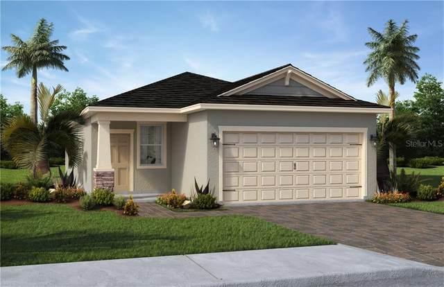 17390 Blazing Star Circle, Clermont, FL 34711 (MLS #O5893129) :: RE/MAX Premier Properties