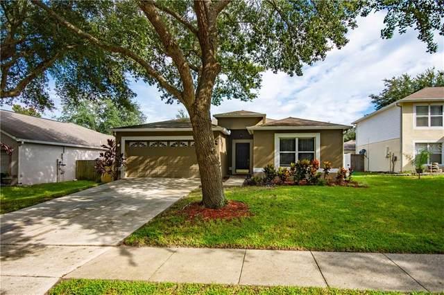 971 Welch Hill Circle, Apopka, FL 32712 (MLS #O5893133) :: RE/MAX Premier Properties
