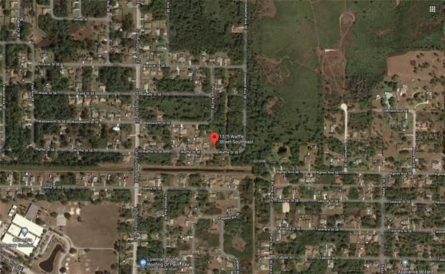 1375 Waffle Street SE, Palm Bay, FL 32909 (MLS #O5893358) :: Heckler Realty