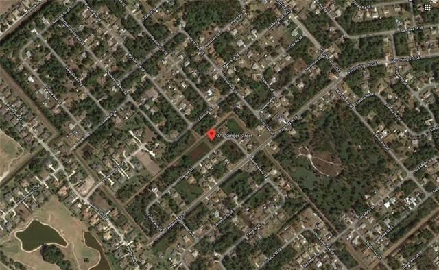 985 Sanger Street SE, Palm Bay, FL 32909 (MLS #O5893360) :: Alpha Equity Team