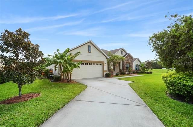 425 Torgiano Drive, Ocoee, FL 34761 (MLS #O5893795) :: The Robertson Real Estate Group