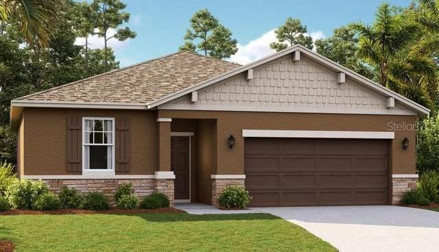 29104 Armoyan Boulevard, Leesburg, FL 34748 (MLS #O5894101) :: Key Classic Realty
