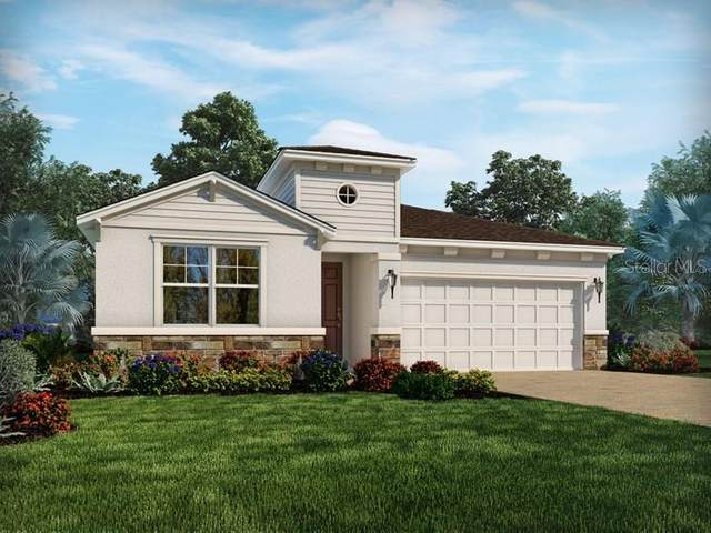 34429 Wynthorne Place, Wesley Chapel, FL 33545 (MLS #O5894110) :: Delgado Home Team at Keller Williams