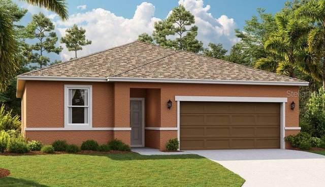 29110 Armoyan Boulevard, Leesburg, FL 34748 (MLS #O5894111) :: The Figueroa Team