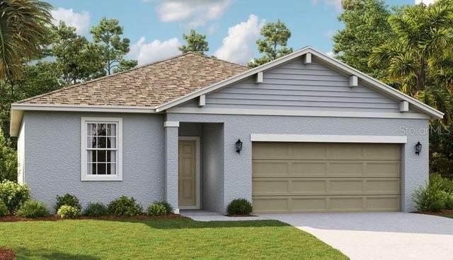 29200 Armoyan Boulevard, Leesburg, FL 34748 (MLS #O5894117) :: Key Classic Realty