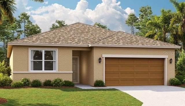 29116 Armoyan Boulevard, Leesburg, FL 34748 (MLS #O5894119) :: Key Classic Realty