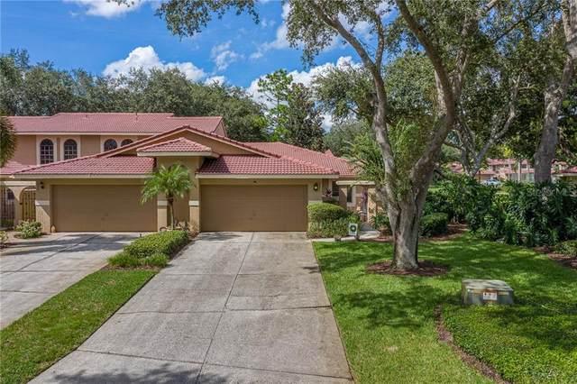 8201 Sandpoint Boulevard, Orlando, FL 32819 (MLS #O5894303) :: Rabell Realty Group