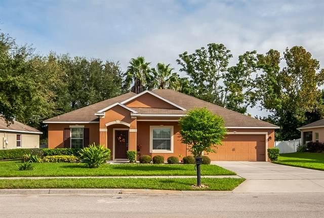 611 Mary Paula Drive, Apopka, FL 32712 (MLS #O5894337) :: Rabell Realty Group