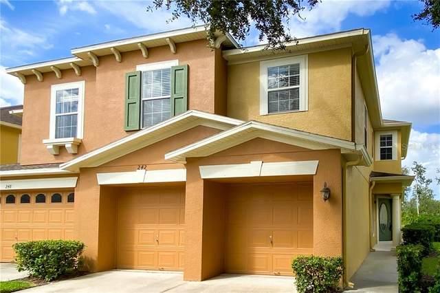 242 Winter Nellis Circle Circle, Winter Garden, FL 34787 (MLS #O5894671) :: Alpha Equity Team