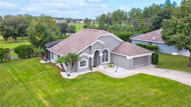 10447 Paradise Bay Court, Clermont, FL 34711 (MLS #O5895031) :: Bustamante Real Estate