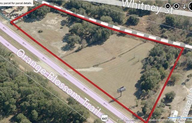 3580 N Orange Blossom Trl, Mount Dora, FL 32757 (MLS #O5895238) :: Team Bohannon Keller Williams, Tampa Properties