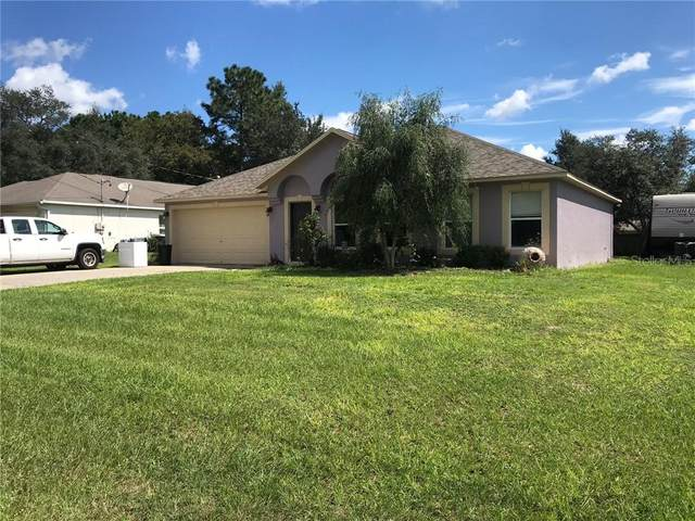8309 N Triana Drive, Citrus Springs, FL 34434 (MLS #O5895246) :: Rabell Realty Group