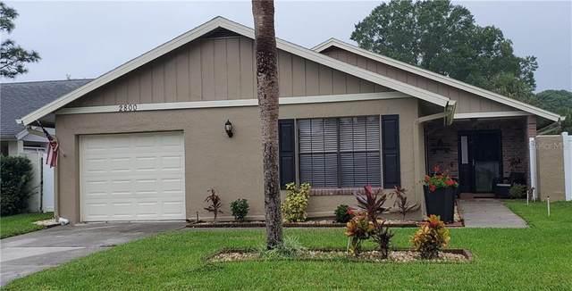 2800 Heatherside Avenue, Orlando, FL 32822 (MLS #O5895459) :: Griffin Group