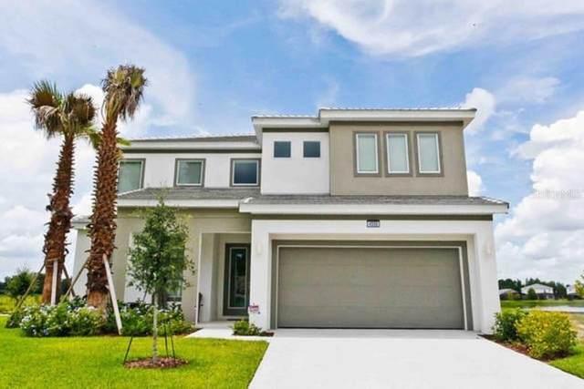 4500 Monado Drive, Kissimmee, FL 34746 (MLS #O5895491) :: Alpha Equity Team