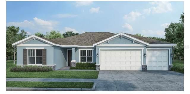 433 Nowell Loop, Deland, FL 32724 (MLS #O5895575) :: Carmena and Associates Realty Group