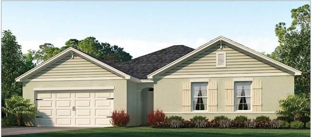 216 Rip Cord Lane, Deland, FL 32724 (MLS #O5895752) :: Cartwright Realty