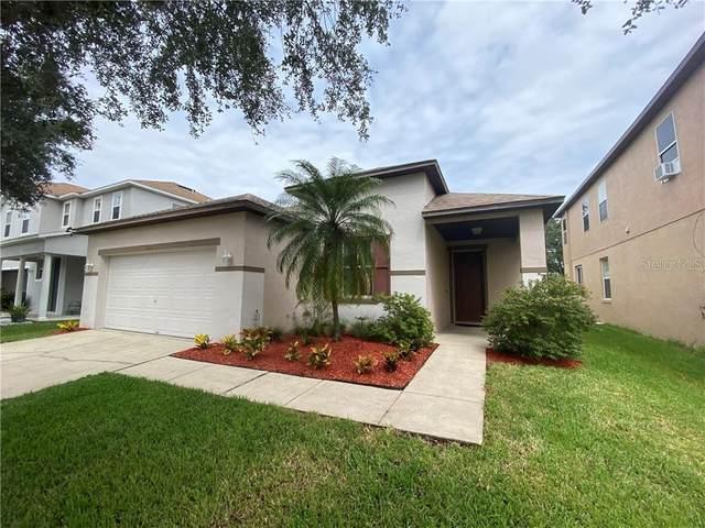 424 Janice Kay Place, Kissimmee, FL 34744 (MLS #O5896091) :: CENTURY 21 OneBlue