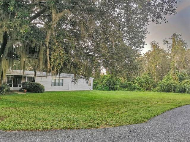 37815 Maywood Bay Drive, Leesburg, FL 34788 (MLS #O5896757) :: EXIT King Realty