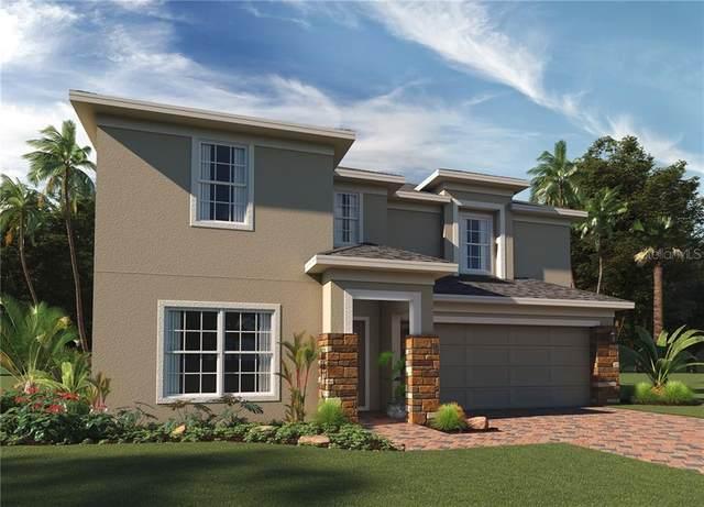 5587 Sabal Drive, Saint Cloud, FL 34771 (MLS #O5896774) :: The Duncan Duo Team
