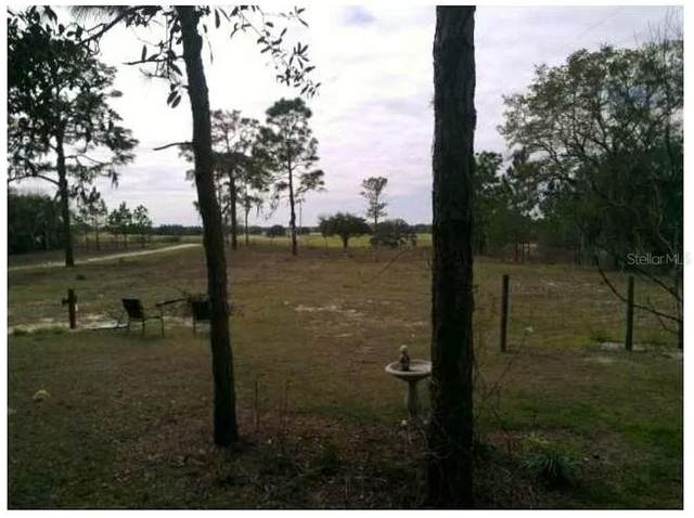 11317 SW 234TH Street, Archer, FL 32618 (MLS #O5897567) :: BuySellLiveFlorida.com