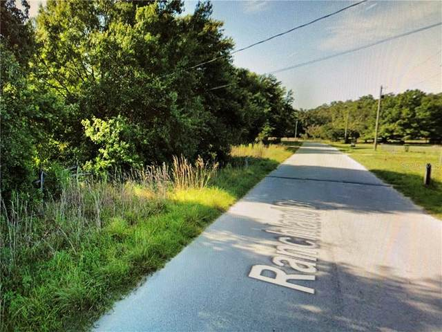 Ranchland Drive, Lakeland, FL 33809 (MLS #O5897661) :: Baird Realty Group